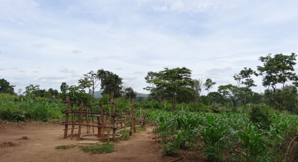 Nyabusojo-Brunnen